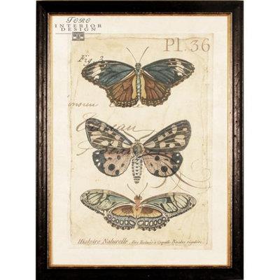 Serie 'Vlinders in lijst' 1