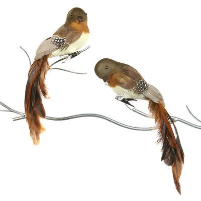 Vogel met klip 25 cm (p.s.)