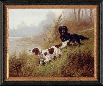 Schilderij canvasdoek met 2 jachthonden in het veld