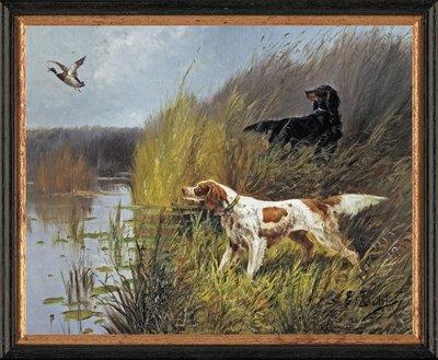 Schilderij canvasdoek met 2 jachthonden bij water