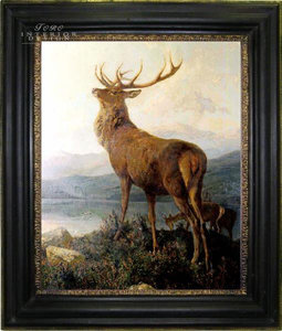 a deer in a frame